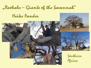 Presentation_Baobabs_2215
