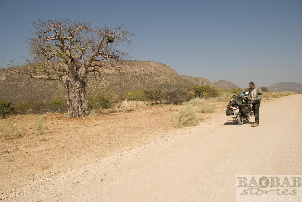 Baobab, Break, Street, Epupa Falls