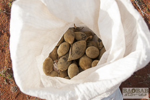 Bag with Baobabfruit