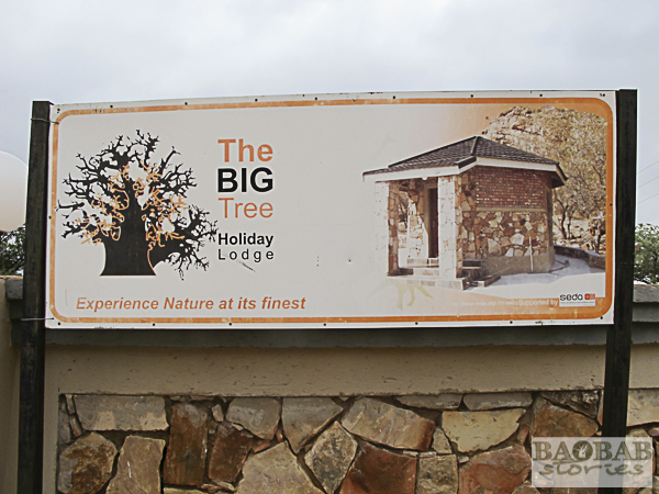 The Big Tree Lodge, Venda Area, South Africa