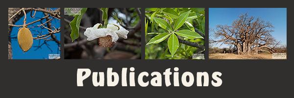 Baobab_Publications_08_2016