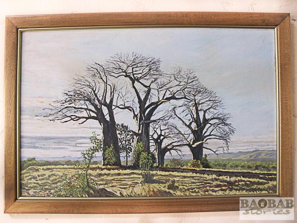 Baobabs, Chitaki, Wayne Stutchbury, Artist