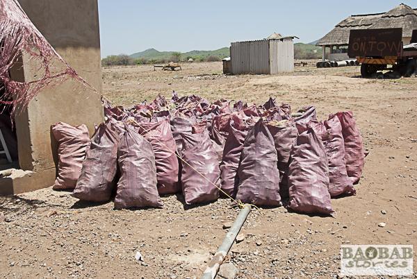 Baobab Bags at Factory