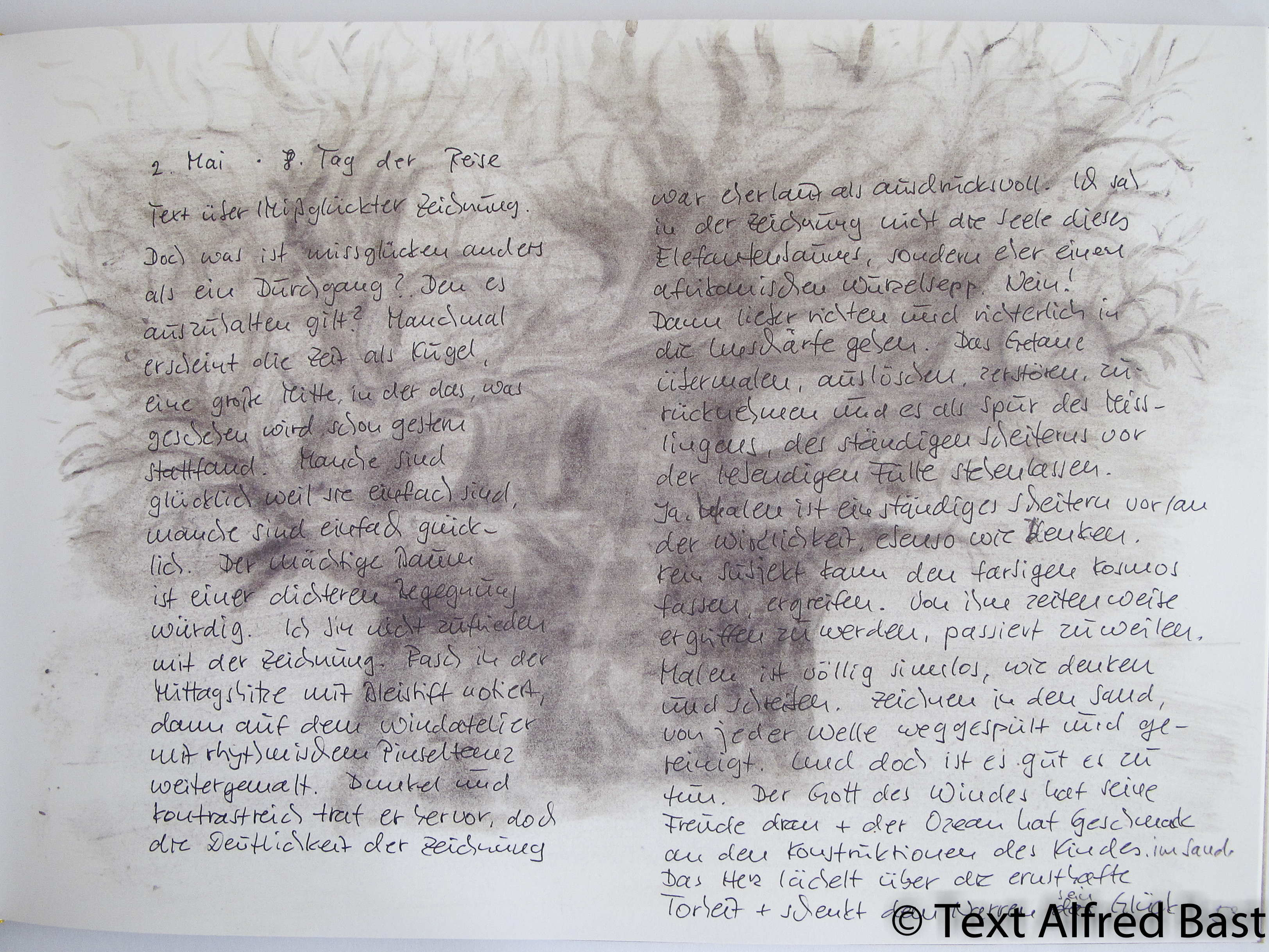 Drawings and text about Baobab in work book, Alfred Bast