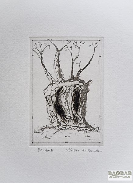 Hollow Baobab