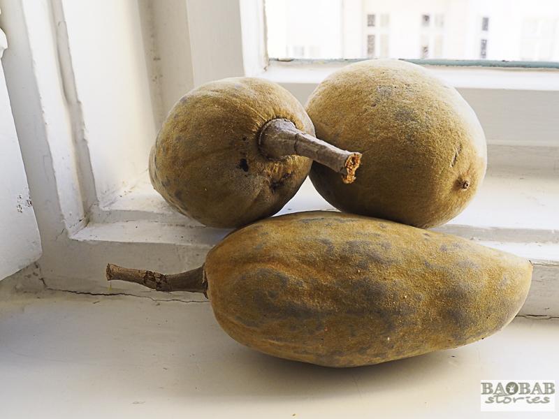 Baobab Deko: Baobab fruit of different shapes