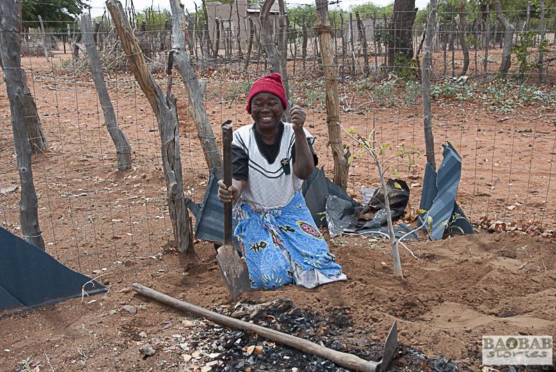 Martha Kwerana planting a baobab, Zwigodini, South Africa