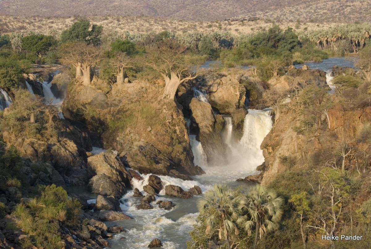 Besondere Baobabs: Standort Epupa Falls, Namibia
