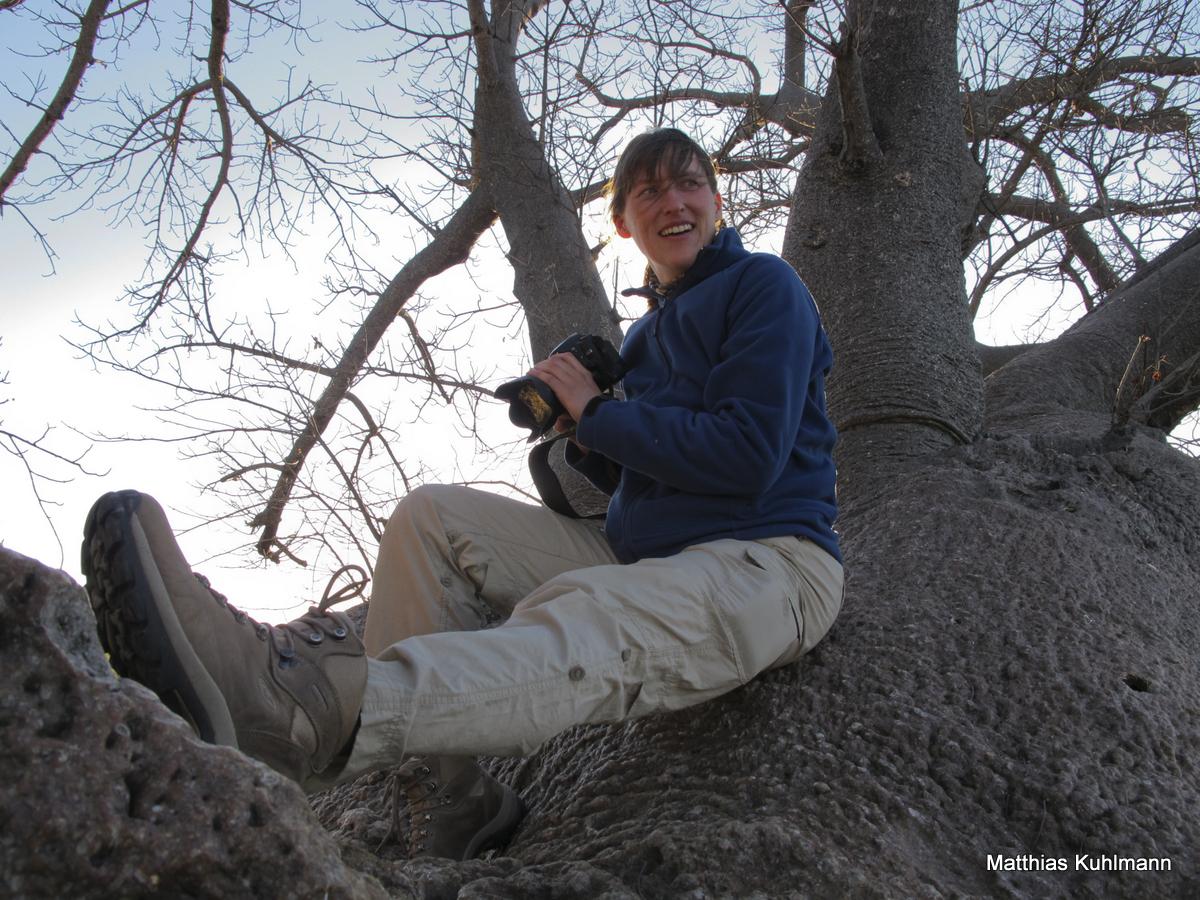 Holboom, Namibia, Matthias Kuhlmann