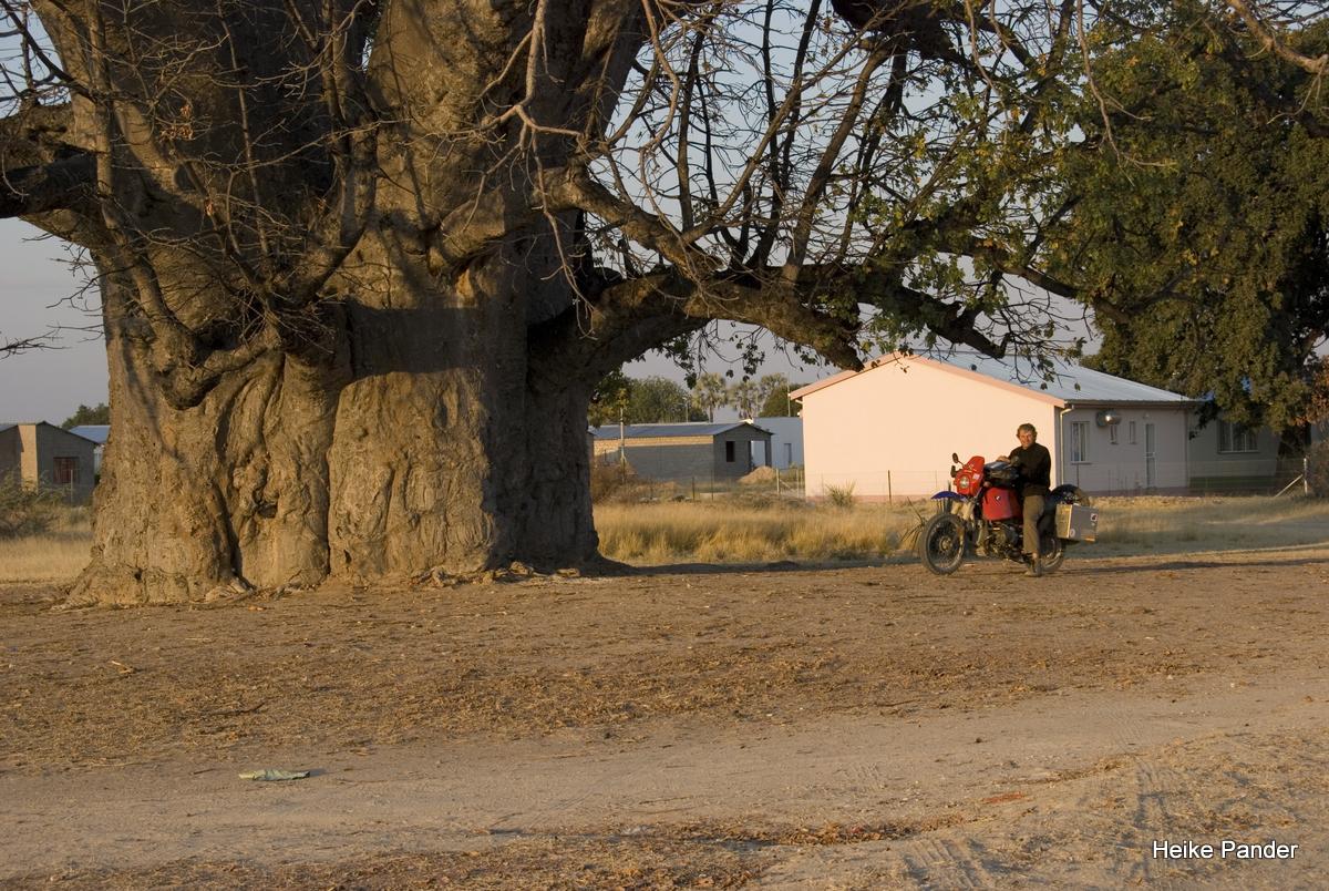 Motorrad unterm Baobab, Heike Pander