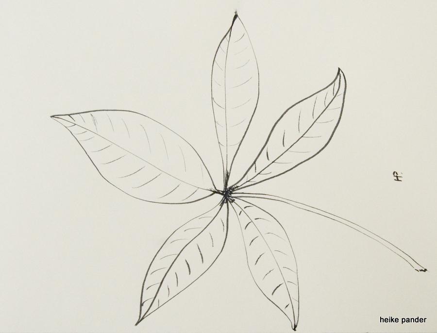 Blatt vom Baobab, Tinte auf Papier, Heike Pander, 2013