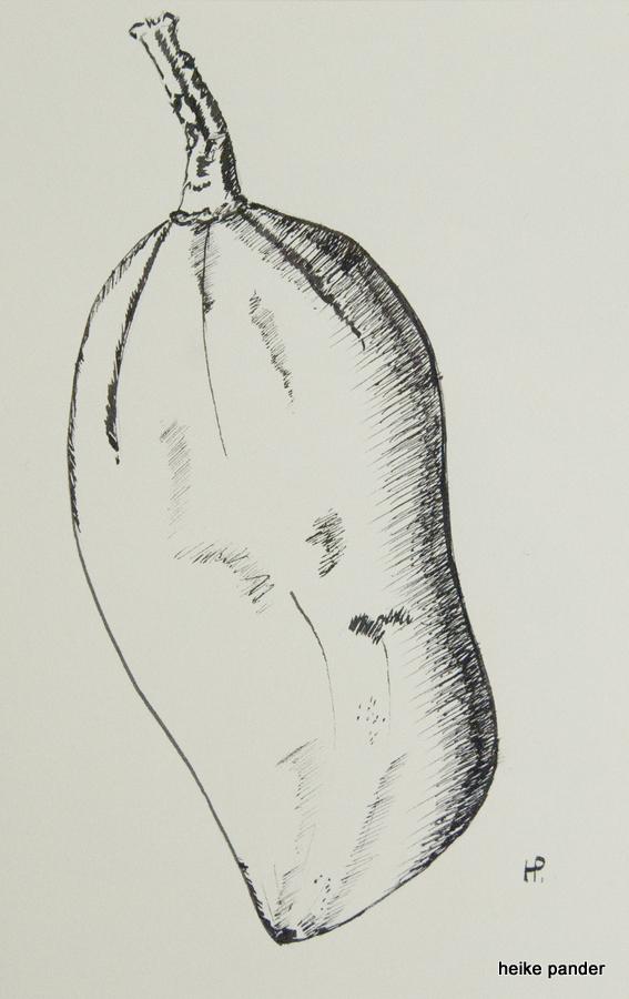 Frucht vom Baobab, Tinte auf Papier, Heike Pander, 2013