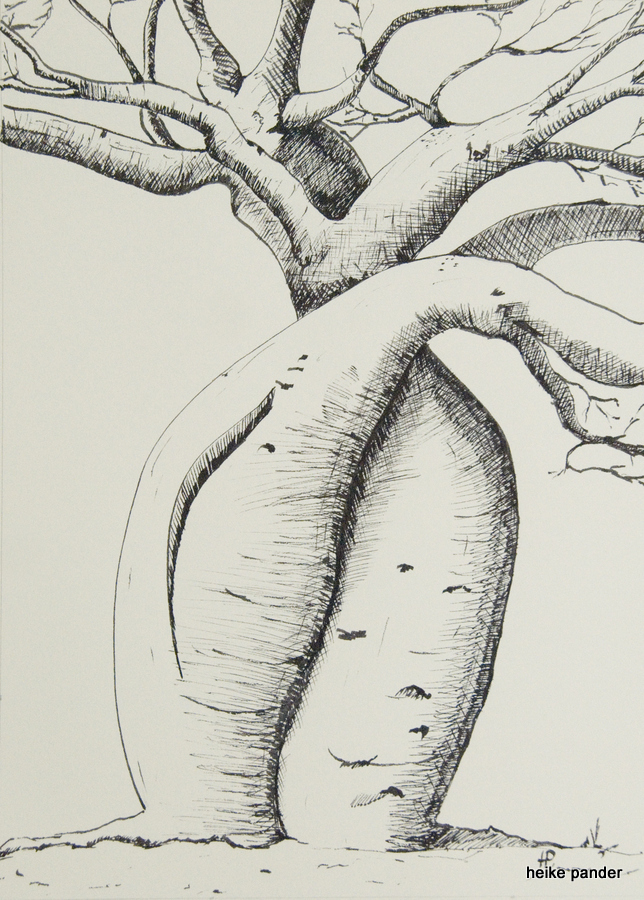 """Baobabs """"die Liebenden"""", Tinte auf Papier, Heike Pander, 2013"""