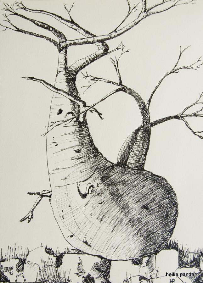 """Baobab """"Wal"""", Tinte auf Papier, Heike Pander, 2014"""