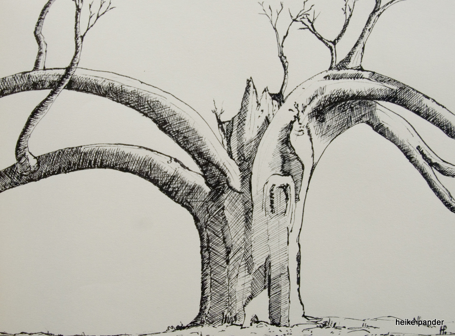 "Baobab ""Adler"", Tinte auf Papier, Heike Pander, 2014"