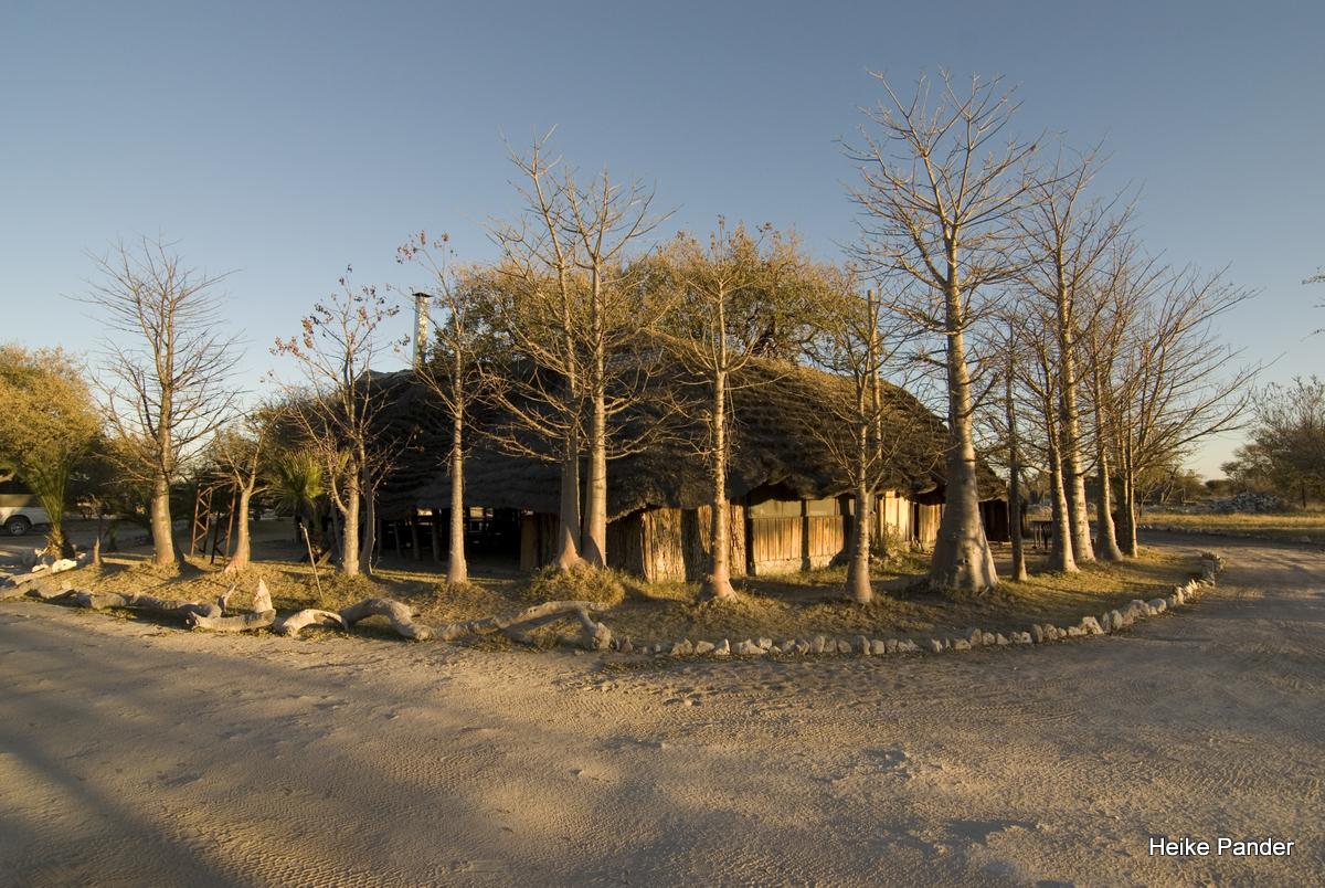 Campingplatz mit Baobaballee, Tsumkwe, Heike Pander