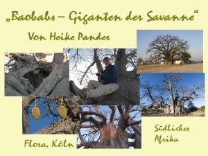 Vorträge_Baobabs_290814