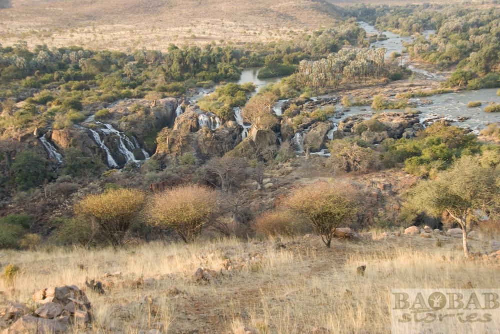 Baobabs, Epupa Falls von oben