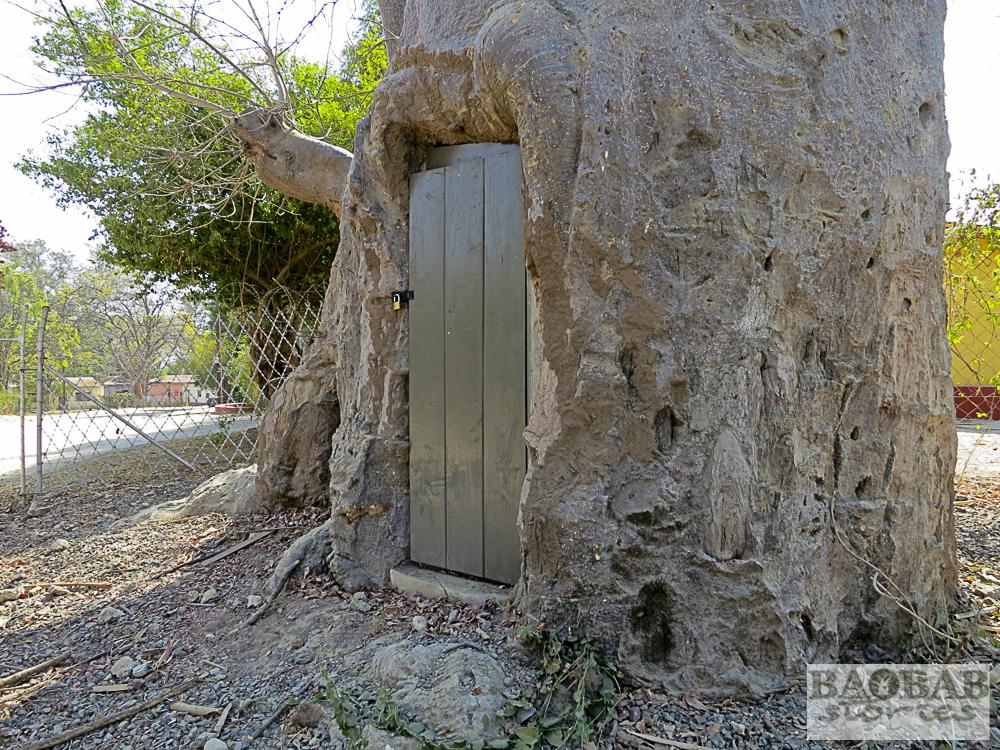 Baobab mit Toilette, Katima Mulilo, Namibia, Heike Pander