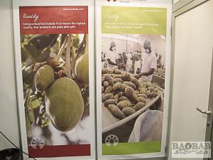 Baobab at Biofach