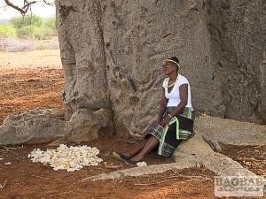Sylvia Mathoho unterm Baobab