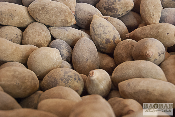Baobab Früchte
