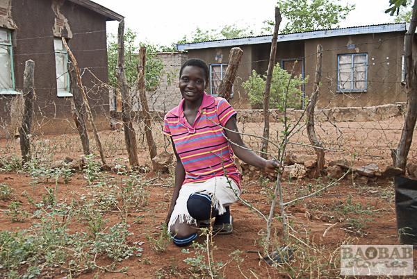 Sophia Mepfumbada mit Baobabsetzling
