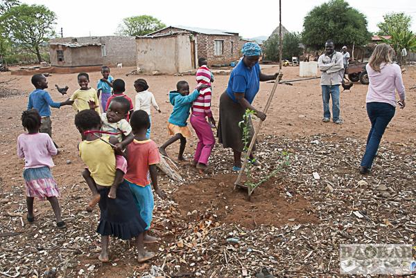 Mashudu Rammbasa mit Baobabsetzling