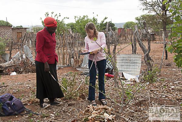 Blessing Mamubeda und Dr. Sarah Venter beim Vermessen eines Baobabs