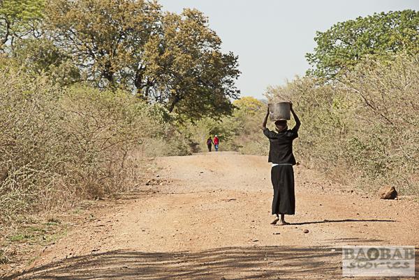 Alte Frau trägt Wasser, Simbabwe
