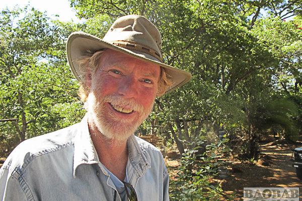 Wayne Stutchbury, Künstler