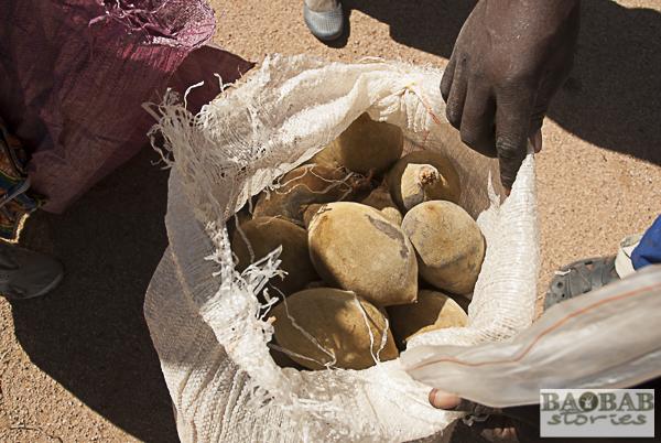 Baobab Früchte im Sack