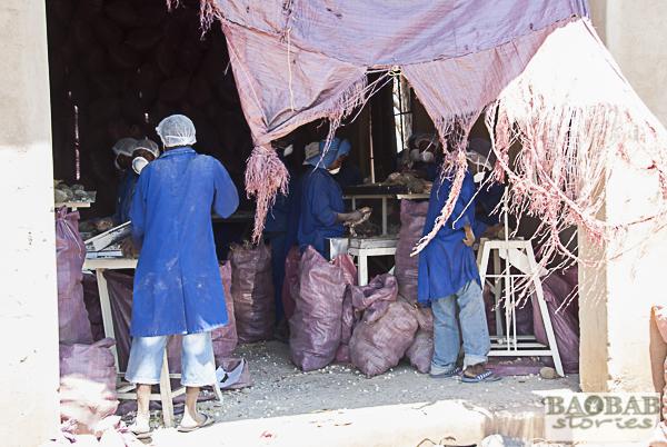 Fabrik am Kamusenzere Wirtschaftsverband für Getreidevermarktung