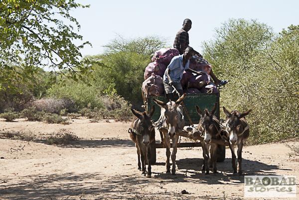 Auf dem Weg zur Baobab Sammelstelle