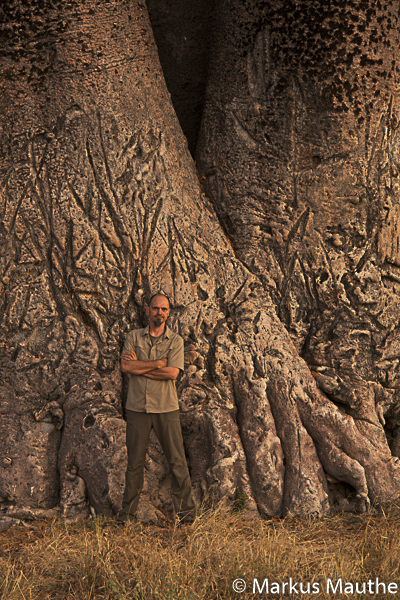 Markus Mauthe, Baobab