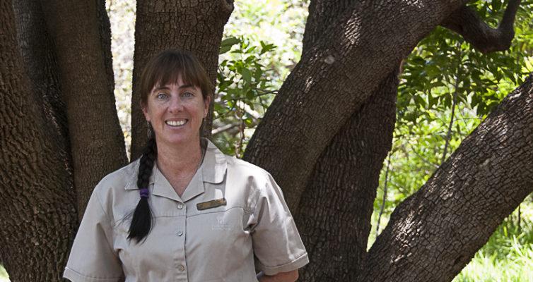 Michele Hofmeyr, Krüger NP, Südafrika