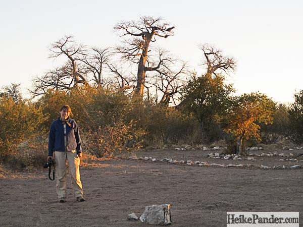 Baobab Piratenschiff Namibia
