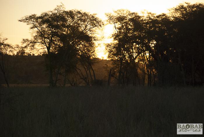 Sonnenuntergang_Makuleke, Südafrika
