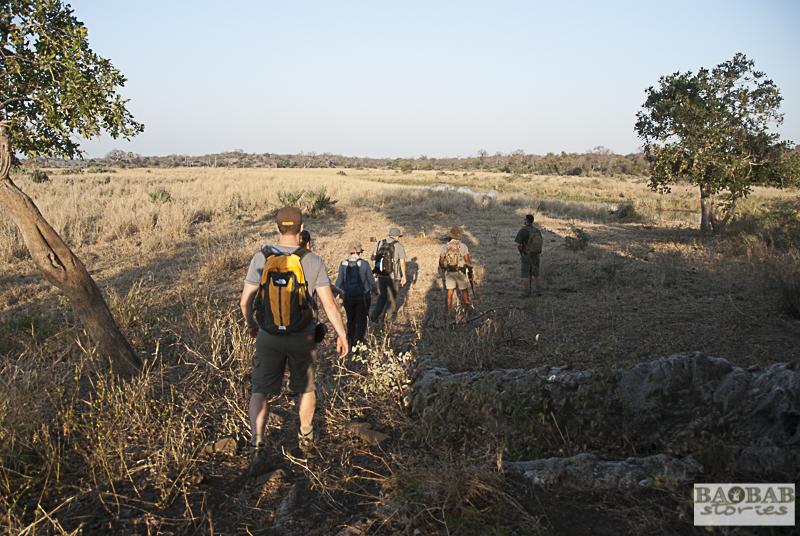 Wanderung mit Haritha Pilapitiya, Makuleke, Südafrika