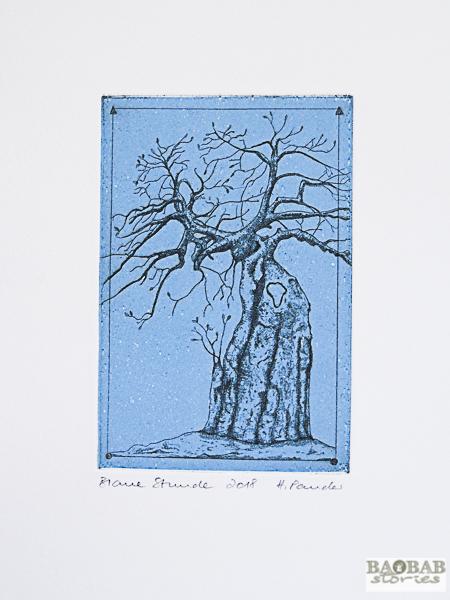 """Baobab """"Blaue Stunde"""""""