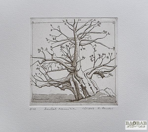 Baobab Radierung