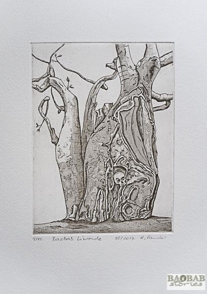 Baobab Liwonde