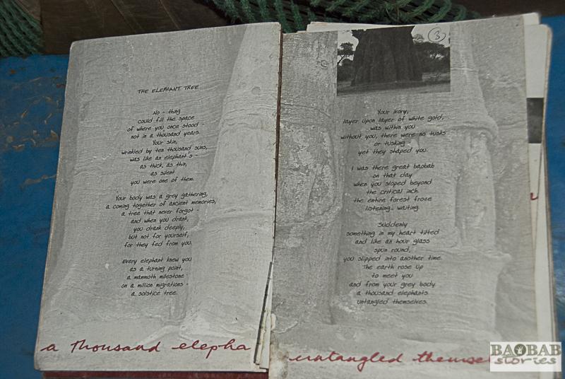 Wild Gifts, Gedicht, Ian McCallum