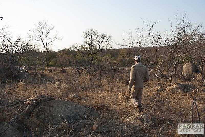 Norman Chauke, EcoTraining Camp, Südafrika