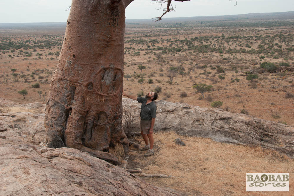 Henry Parsons, Rhodes Baobab, Mashatu, Botswana