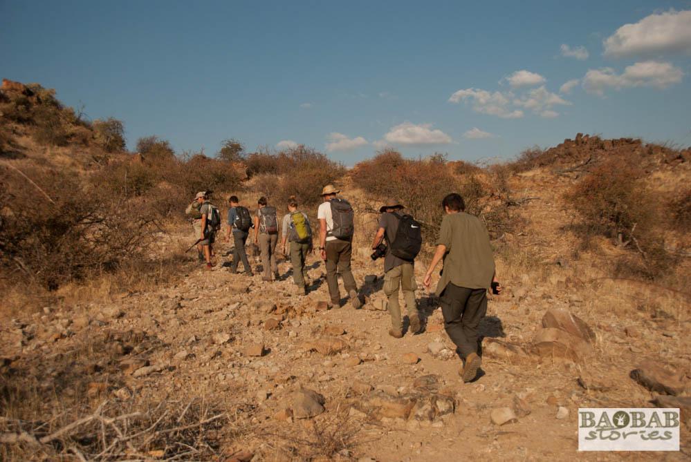 Wanderung in der Wildnis, EcoTraining, Mashatu, Tuli Block,