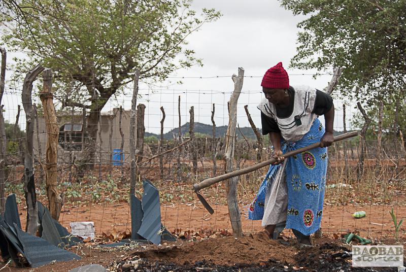 Martha Kwerana pflanzt ihren Baobab