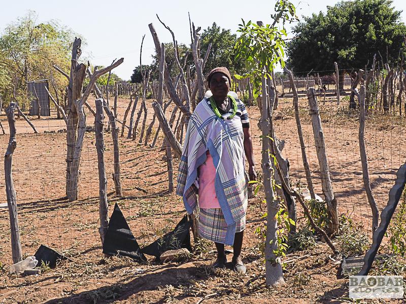 Martha Kwerana neben ihrem Baobab