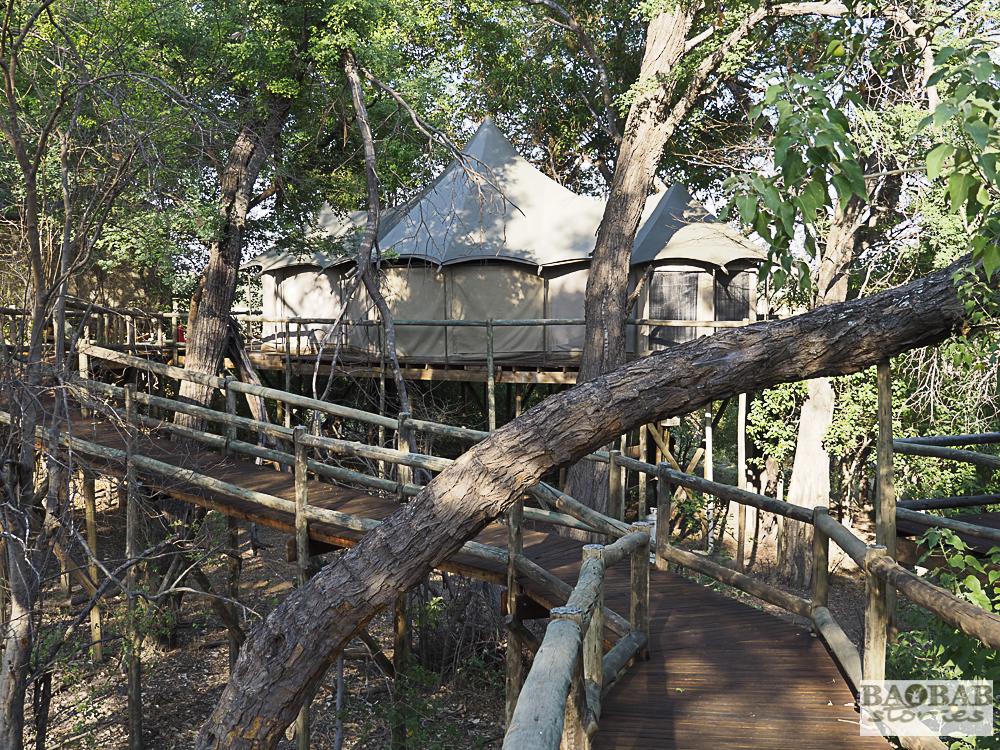 Stege zum Zelt, Nambwa Lodge, Bwabwata Nationalpark, Namibia, 2018